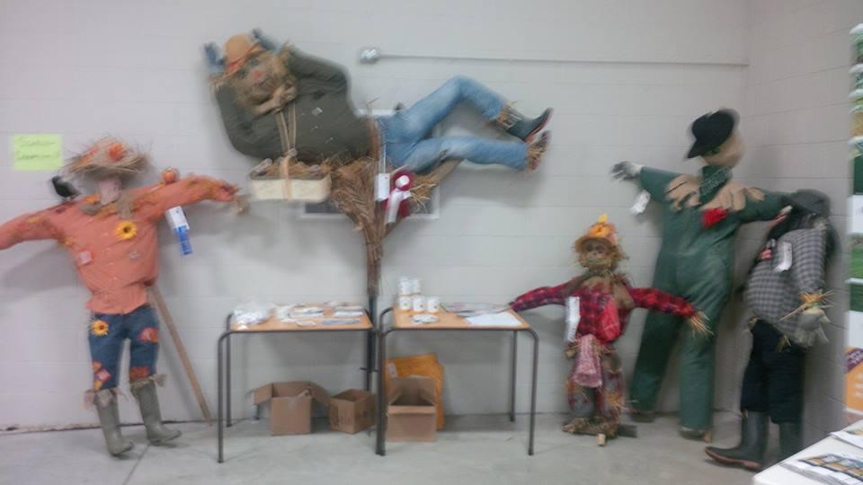 Fair Scarecrow